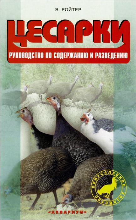 Содержание и выращивание птицы 989