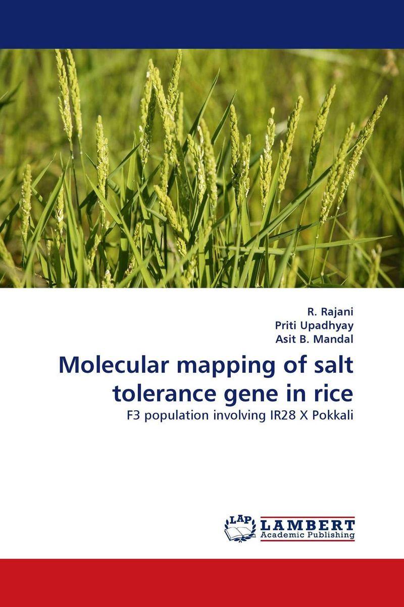 improving salinity tolerance in rice using