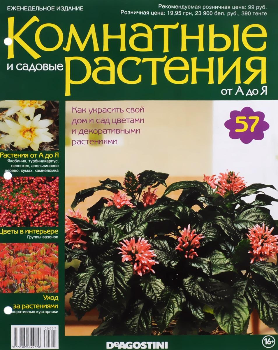 комнатные растения энциклопедия с картинками даже
