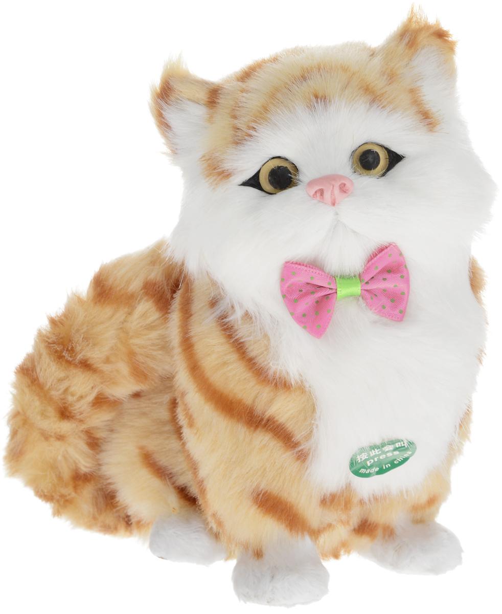 картинки игрушка котик без фона лица