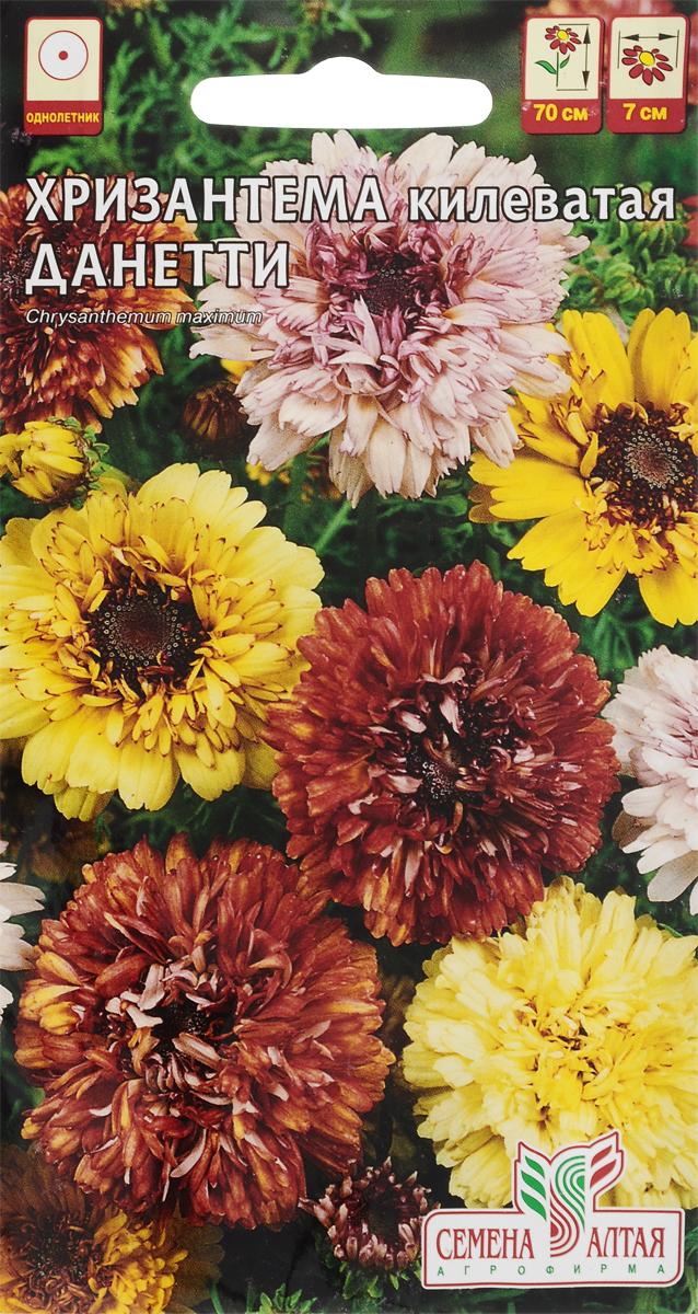 Как собрать семена хризантемы однолетней